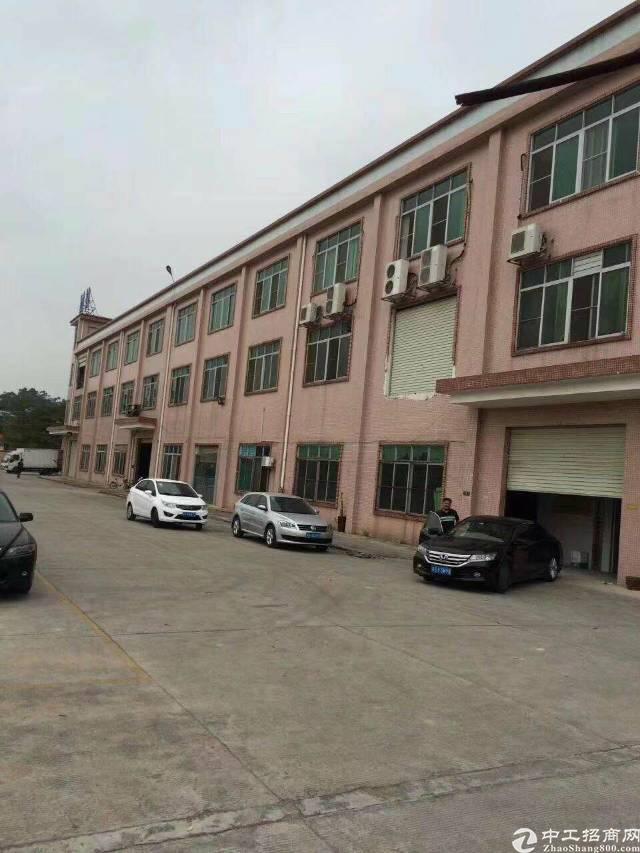樟木头原房东标准独院厂房4800平方招租