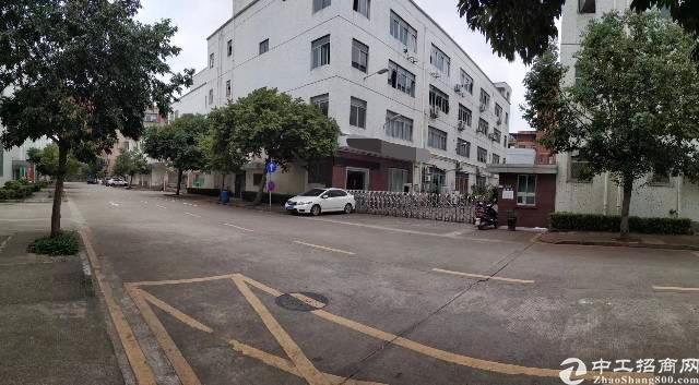 南山西丽松柏路旁一楼带装修1200平