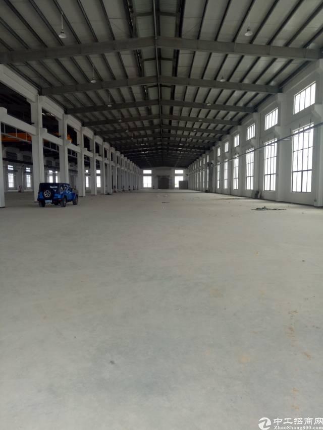 原房东独门独院钢结构厂房3000平方,砖墙到顶