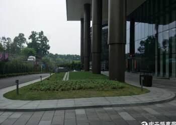 广州科学城高端写字楼出租图片2