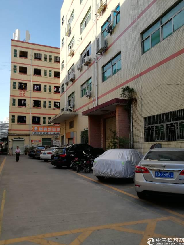 西乡鹤洲967平标准厂房出租