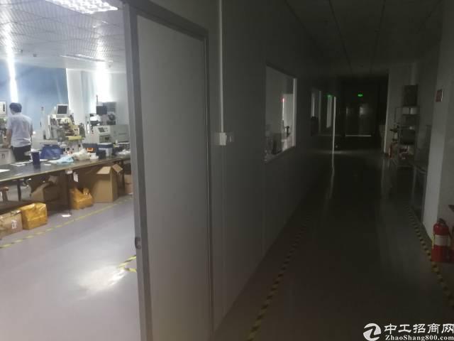 公明镇新出厂房3楼800平方带精装带无尘车间出租-图4