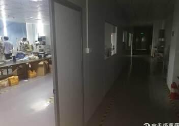 公明镇新出厂房3楼800平方带精装带无尘车间出租图片4