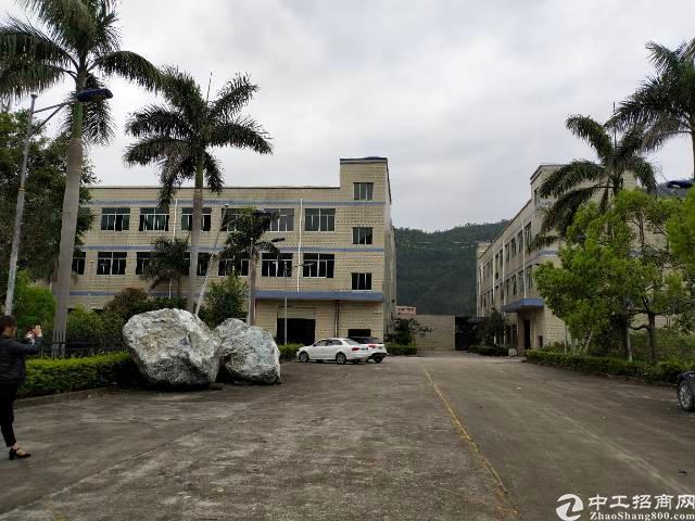 大亚湾西区独栋花园式厂房4700平现成装修办公室