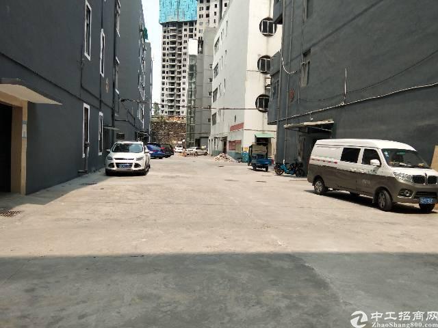 福永凤凰新出红本厂房楼上600平