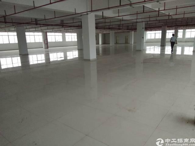 惠州市仲恺新出独门独院标准厂房,价格优惠,红本在手