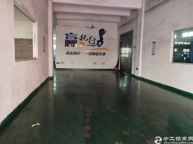 松岗燕川新出原房东厂房出租。