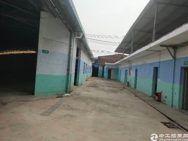 惠城区河南岸新出原房东单一层独院滴水8米招租