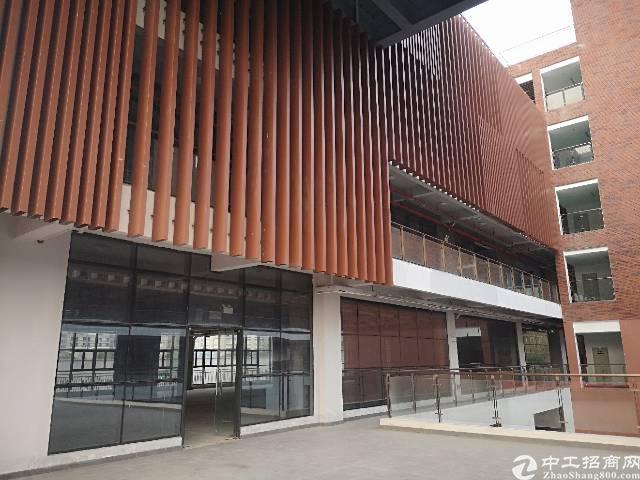 广州智慧城200平、豪华装修写字楼出租不用