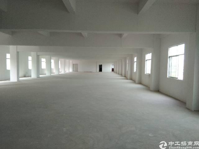 惠城区小金口全新独栋标准厂房外观优美