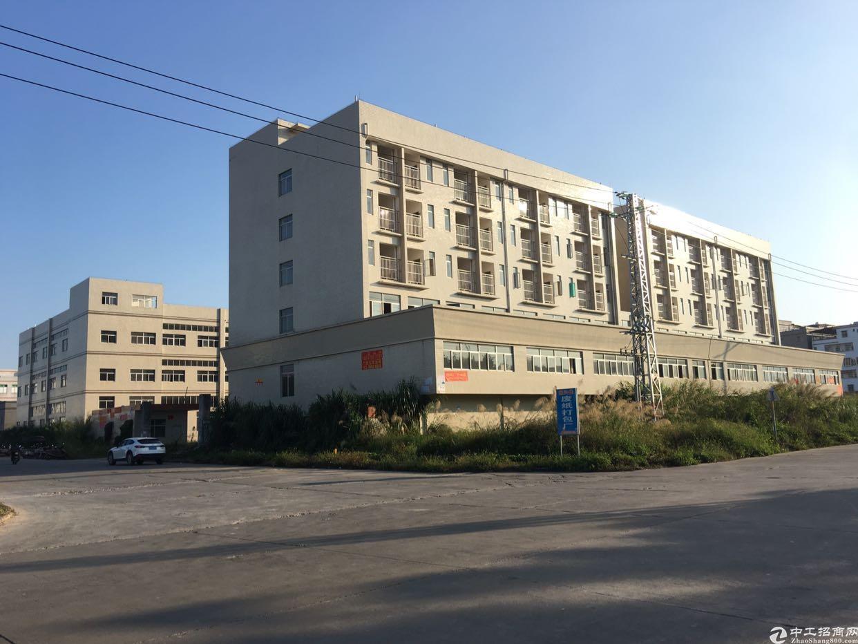 惠州市惠城区6880㎡花园式新厂房出售