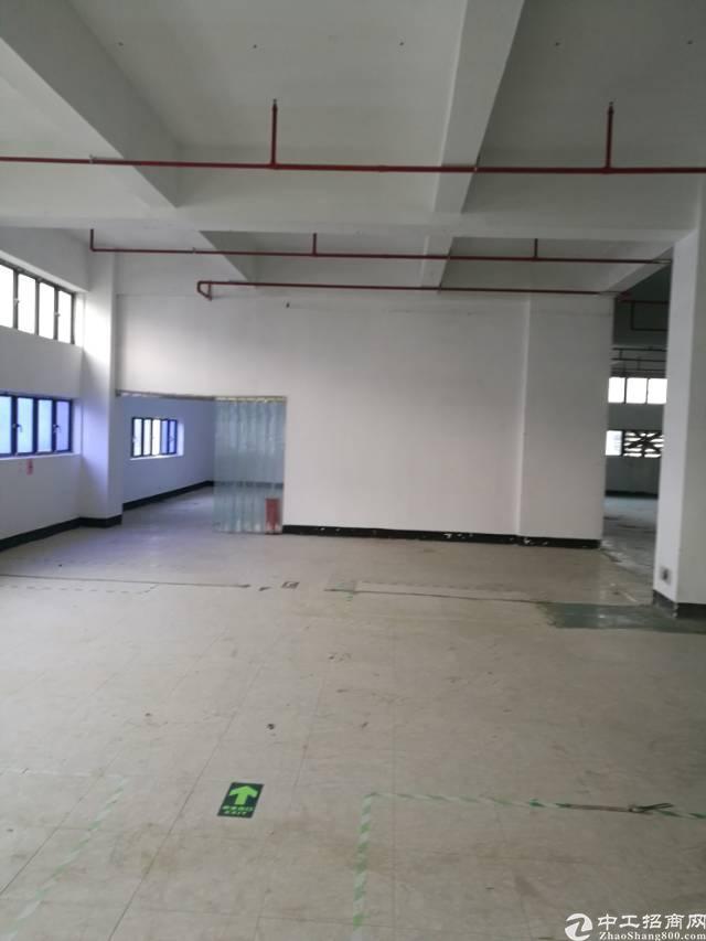 鼎丰工业区原房东厂房出租