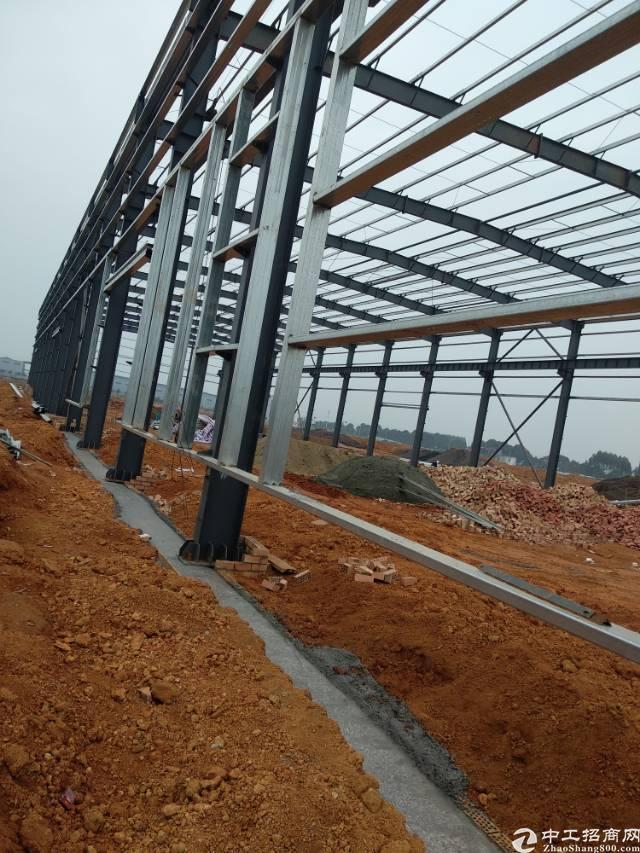 13米高钢结构厂房,50年产权,无税收,可按揭