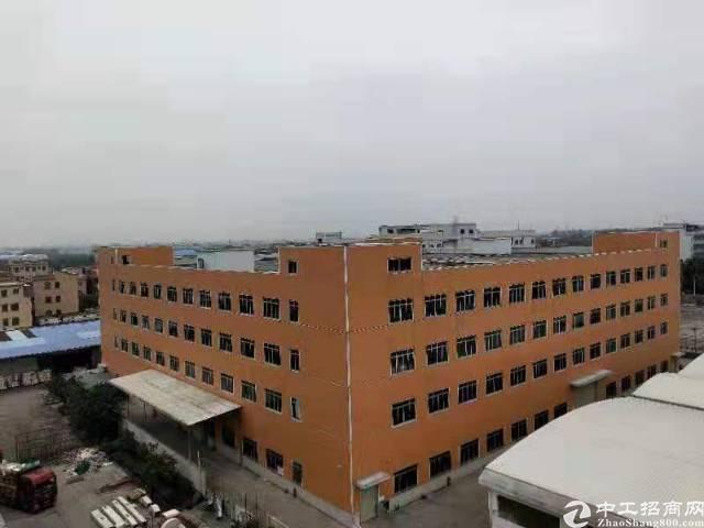南沙区全新超高标准厂房出租,有红本,可办环评