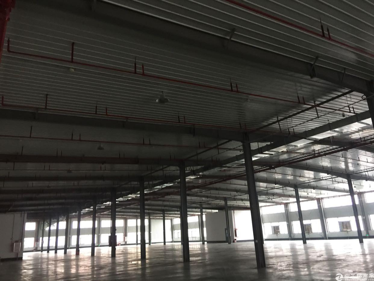 独门独院钢结构12000平米