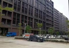 松岗新出高新园区原房东红本厂房一楼5000平可以分租高度七米