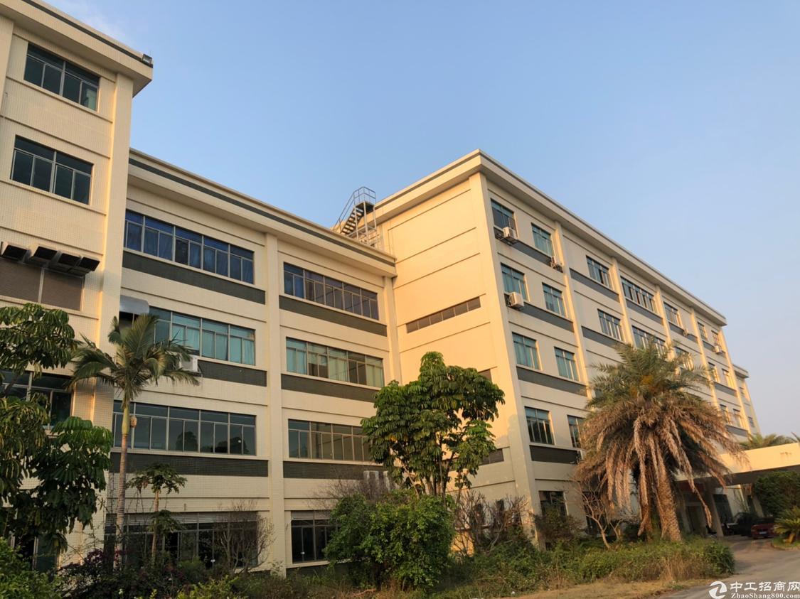 惠城区国有证独院厂房出售