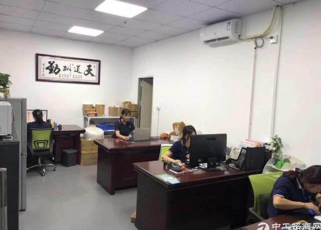 龙华天虹附近新出楼上600平精装修无转让费办公室加小仓库