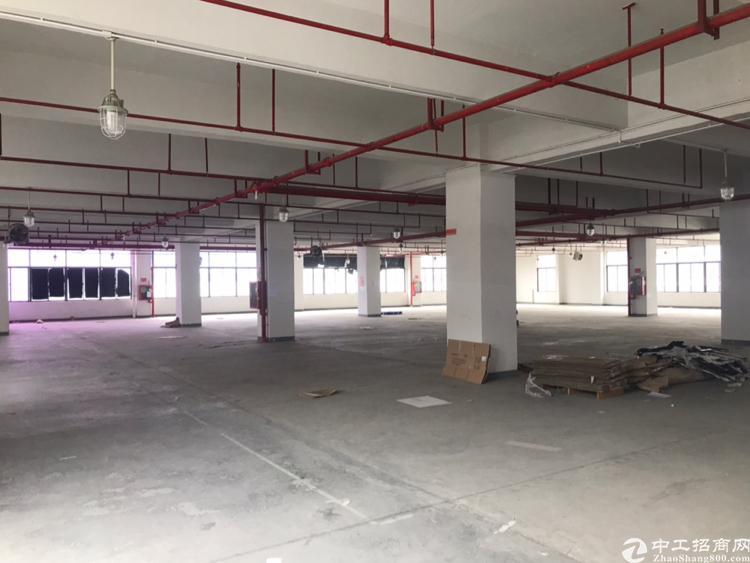 光明南光出口高新园区楼上整层2300平,仓库加工等行业光