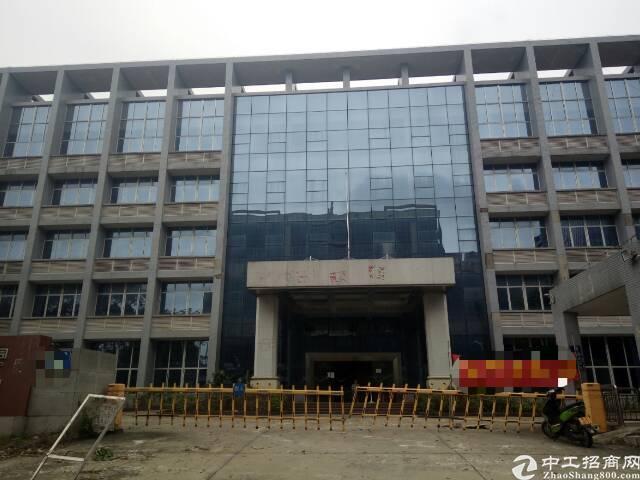 广州市黄埔区永和经济开发区村委会厂房出租