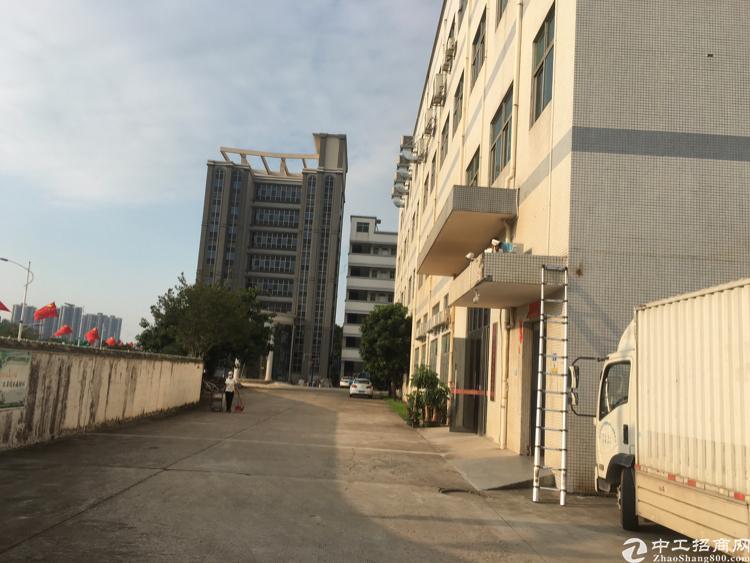 观澜环观中路新出独门独院办公楼,实际面积出租,100至500