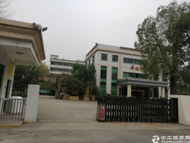 洪梅工业园标准厂房1-3层10000平方