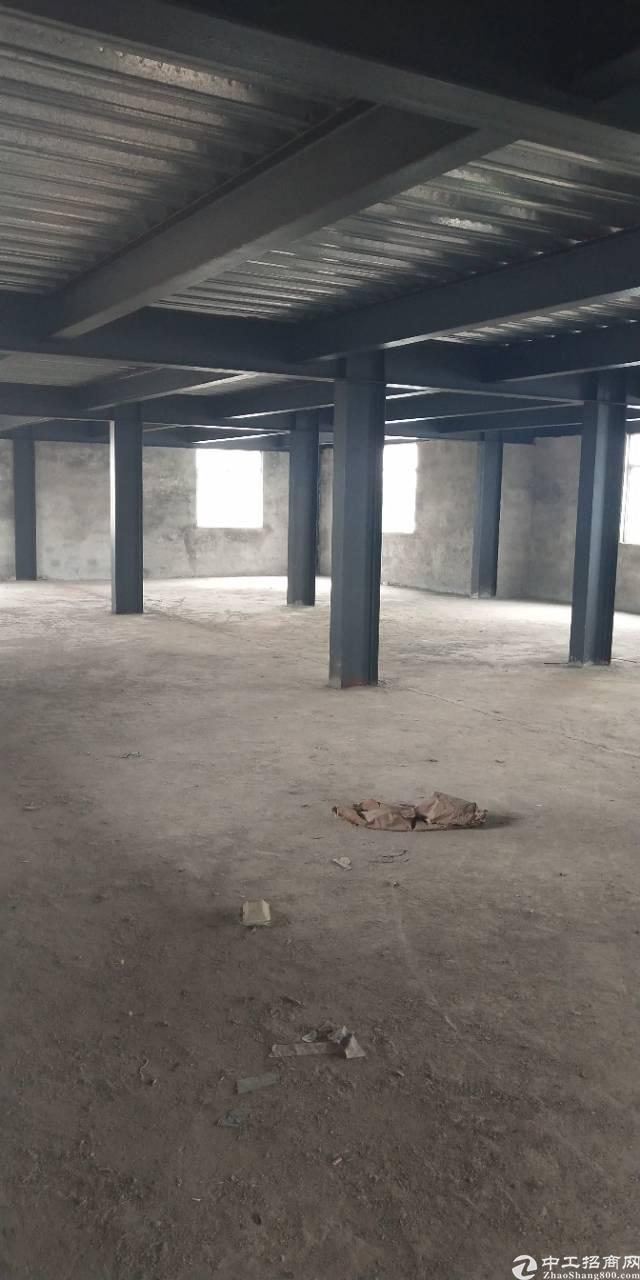 广州黄埔区钢构厂房仓库出租,顶楼有大面积空地免费使用