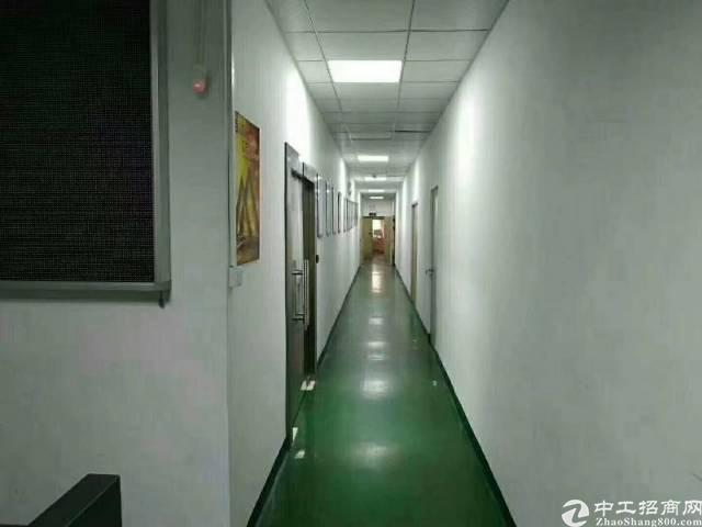 福永凤凰新出精装修700平无转让费厂房出租