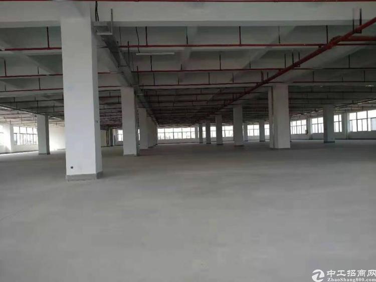 惠州博罗新厂招租