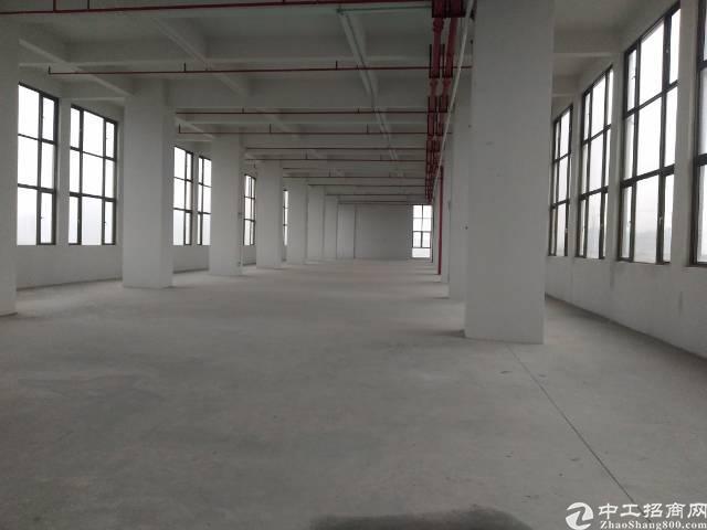 松岗大田洋工业区楼上整层3000平红本厂房带消防喷淋出租!