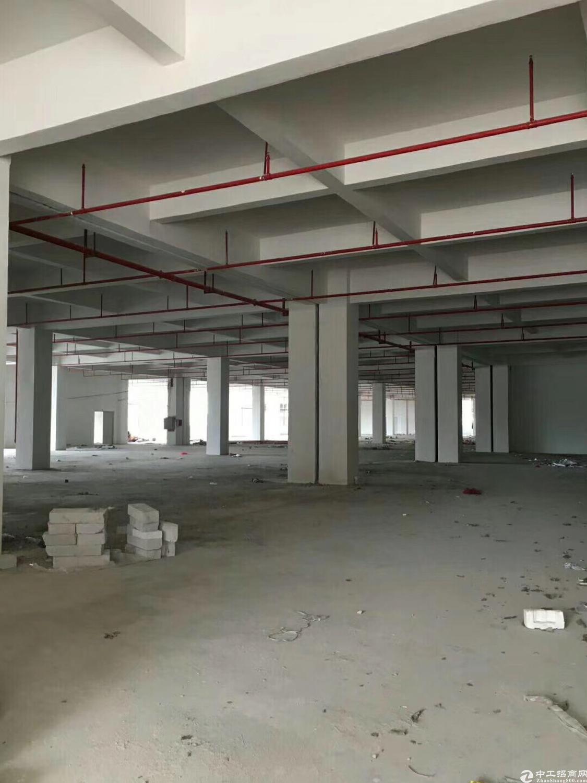 惠州杨村工业园分租