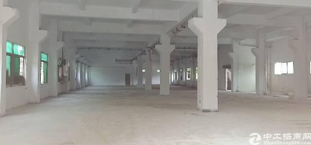 东莞虎门独院厂房招租,实际面积4000平,租15块