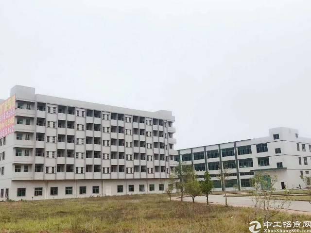 惠州博罗全新红本厂房带喷淋整栋出租或分租12起/平