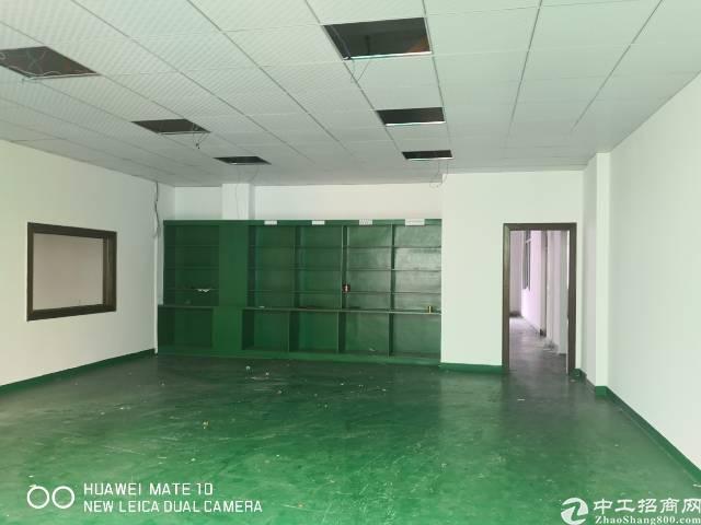 龙岗中心城独院厂房3000平出租200平起分可办租赁合同-图4