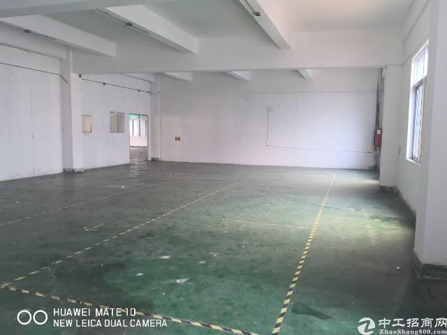 龙岗中心城独院厂房3000平出租200平起分可办租赁合同-图7