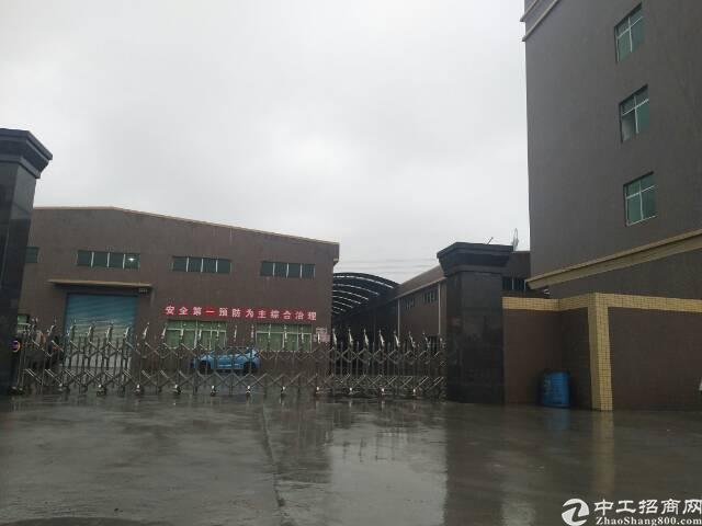 化工厂房仓库出租独门独院钢结构东莞清溪