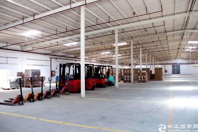 龙岗平湖标准单一层仓库出租6000平,可分租