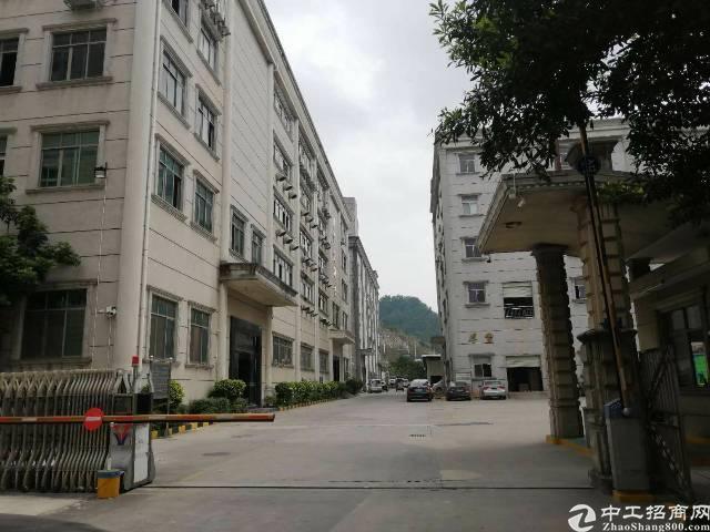 石岩标准厂房3400平,1800平,顶高4.2米,厂房格局好