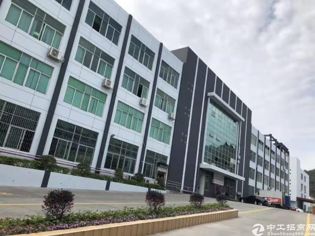 石排原房东独门独院总面积8000方,带独立办公楼