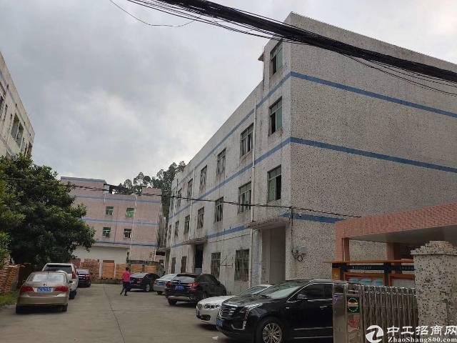 龙岗中心城独院厂房3000平出租200平起分可办租赁合同-图3