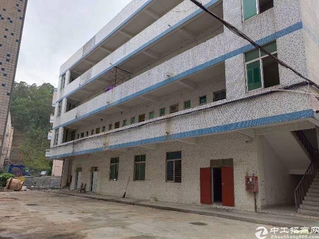 龙岗中心城独院厂房3000平出租200平起分可办租赁合同-图8