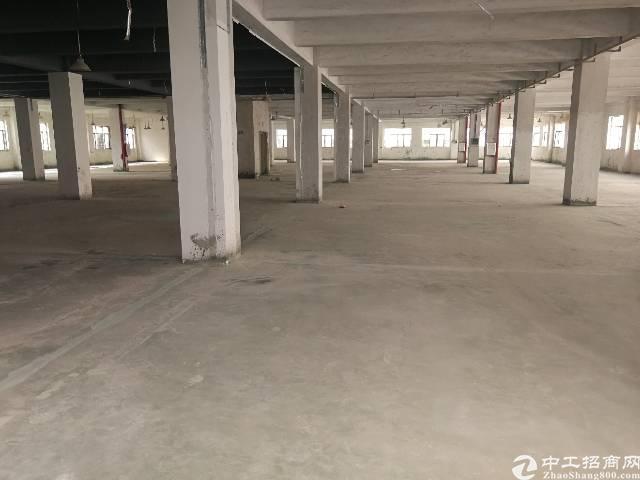 惠州惠城区河南岸新出工业园1楼上2200平标准厂房出租