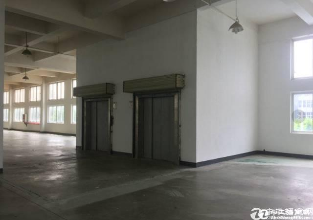 武昌区1200平米框架厂房一层,高6米招租 100平起租