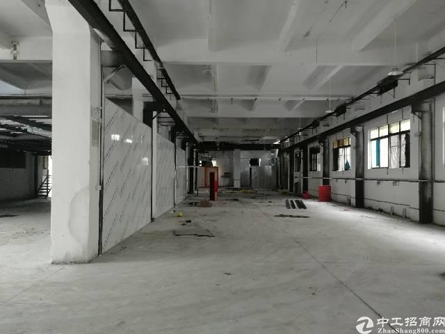 标准独栋两层厂房7200平一楼5.5米