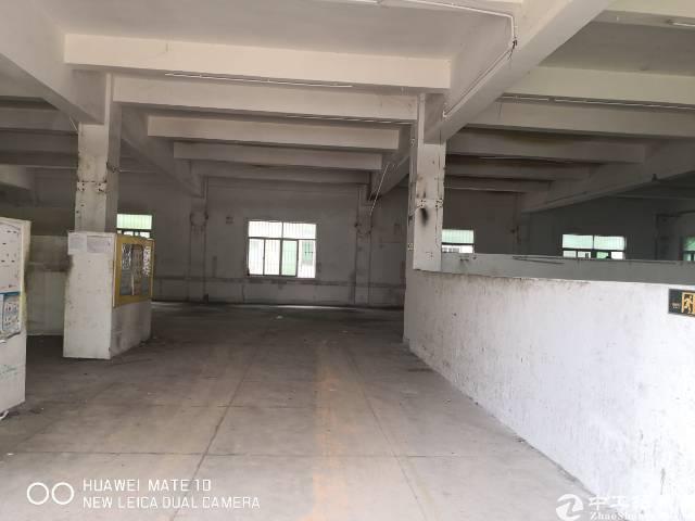 龙岗中心城独院厂房3000平出租200平起分可办租赁合同-图5