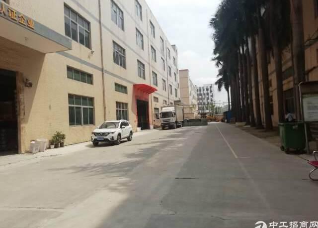 福永原房东楼上整层3000平方带现成装修无需转让费