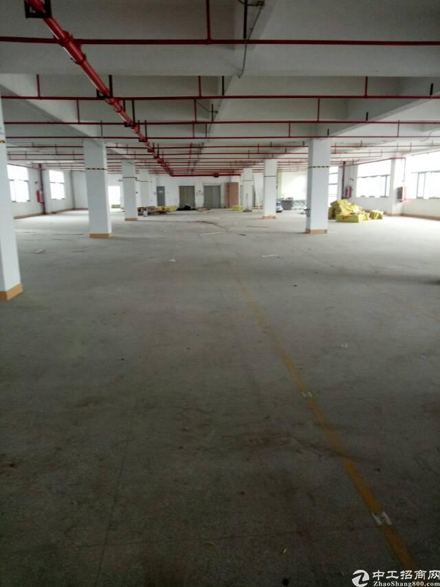 平湖华南城西门楼上无公摊1600平方米带装修厂房招租