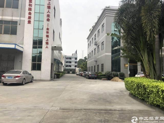 标准厂房分租4300平米(带地坪漆)