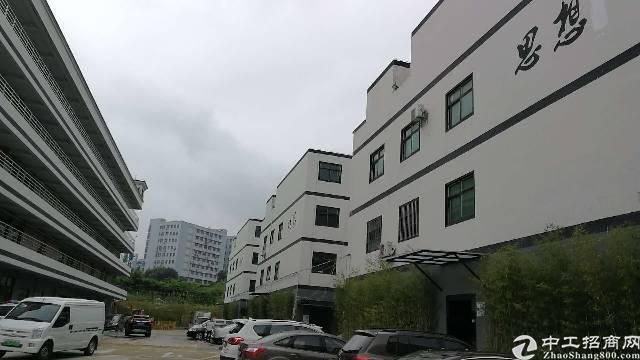 深圳龙华大浪南路238平写字楼出租