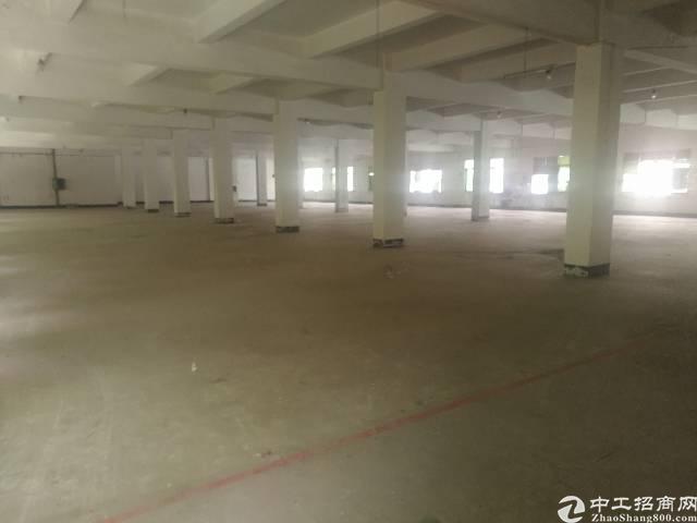 横沥镇新出原房东独门独院厂房6600平。